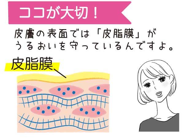 皮膚の表面では「皮脂膜」がうるおいを守っているんですよ。