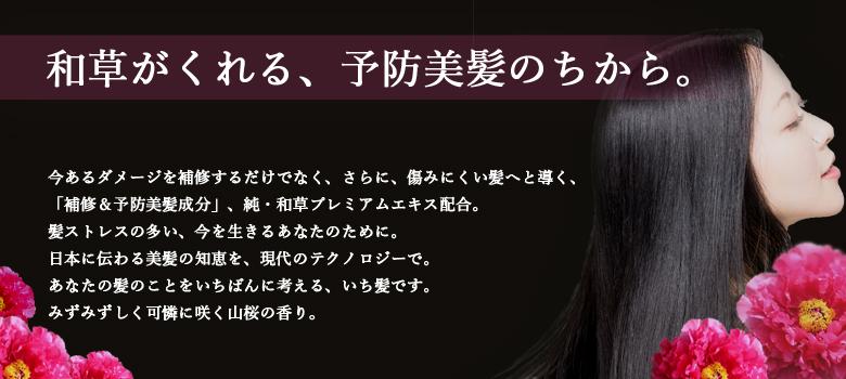 ichikami002