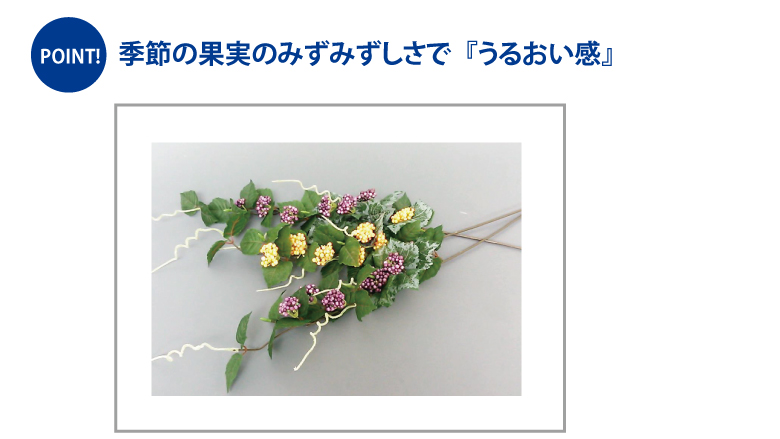 11biyou_sousyoku