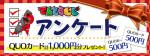 特設アンケート ~QUOカード1000円分プレゼント!~